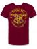 Camiseta adulto manga corta Harry Potter - Hogwarts burdeos Talla XXL