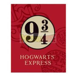 Manta coralina Harry Potter 9 3/4 120x150cm