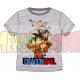 Camiseta niño Dragon Ball - Personajes gris 6 años 116cm